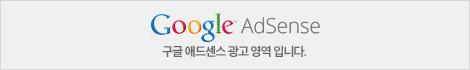 Google 광고삽입